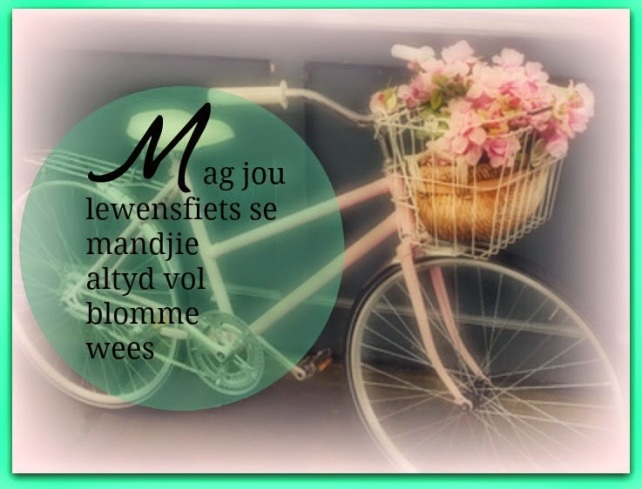 MagJouLewensfiets